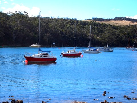 Bruny island touring