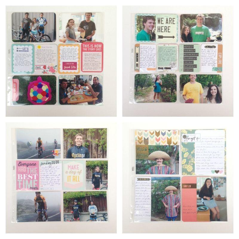 Project life 2014 album