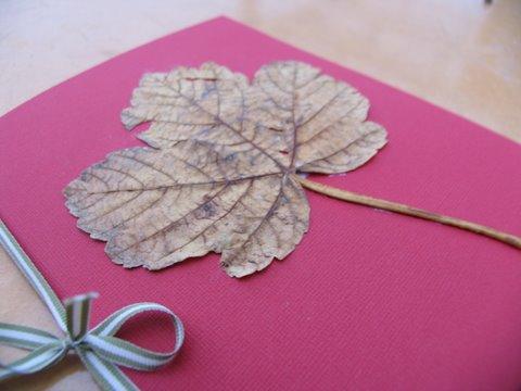 Autumn_009